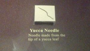 Yucca Needle